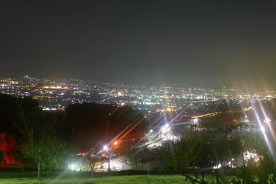 ~日本三代夜景~フルーツ公園と富士サファリパークの旅