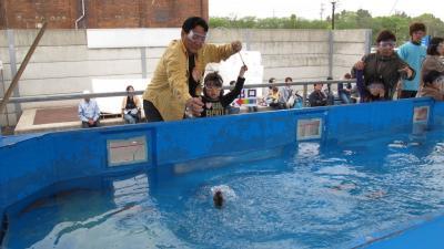 2011年 半田ハウジングセンター 海の釣り堀