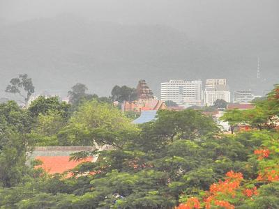 緑薫る。。。雨季のチェンマイに佇む