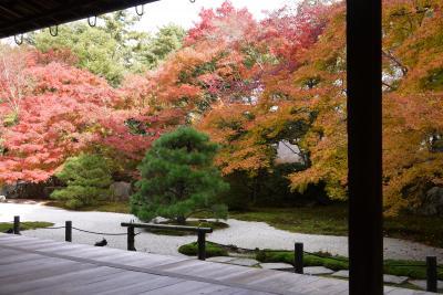 そうだ紅葉を見に京都に行こう・・・東山編