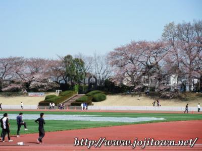 吉祥寺界隈(2011.4.1~4.15)