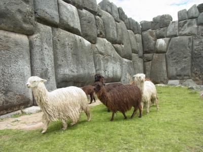ペルー旅行記③ インカ帝国の天空の都・クスコ♪美しい石組みに感動~(≧▽≦)ノシ