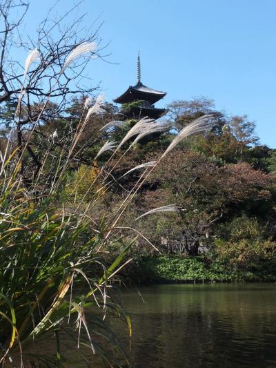 横浜へ…2012.11.14 自転車でウロウロ…①