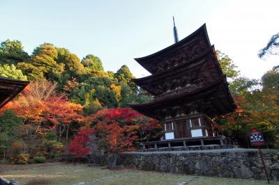 2012年秋の紅葉。滋賀県日帰り旅行。
