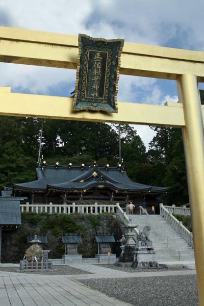 車で静岡 ★火の神・秋葉山に咲く秋の花 エンシュウハグマ