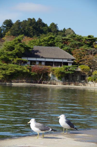 宮城ぶらり旅 観光も復興支援になりますか? ④仙台・松島