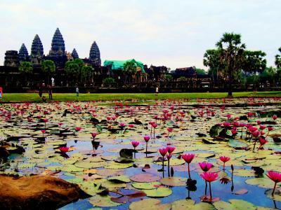 2013年はナーガ(巳)年!~カンボジアでむかえましょう、年末年始!①~