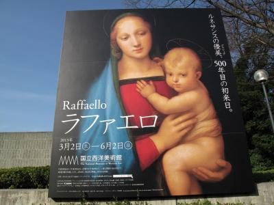 早咲き桜便り ラファエロ展とクラーク・コレクション