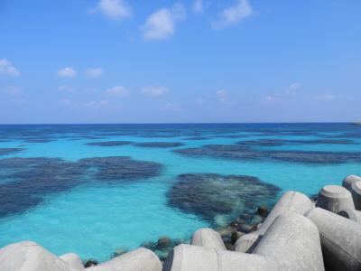 過去49回の沖縄旅行を振り返って