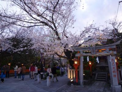 桜咲く京都