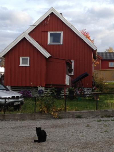 沿岸急行船(フッティルーテン)で秋のオーロラ旅2日目~ノルウェー、デンマーク