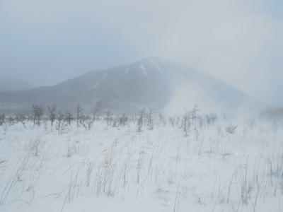 地吹雪の戦場ヶ原ハイキング~景色は素晴らしいが、とにかく寒い~