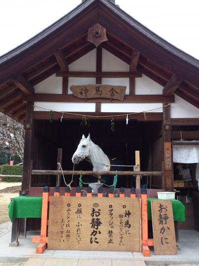 京都 2014年1月