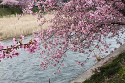 春を感じる小旅行