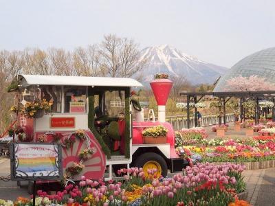 大山Gビール飲み放題と春爛漫 とっとり花回廊でお花見 最後はみなと温泉でゆったりする旅