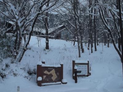 冬の宮城蔵王への旅!