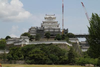 世界遺産 姫路城 美しい姿をようやく現し始めた天守閣