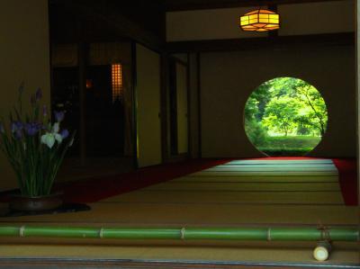 明月院 Blue に会いたくて /梅雨の晴れ間に鎌倉さんぽ