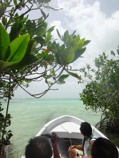 メキシコ: シアン・カアン 生物圏保護区