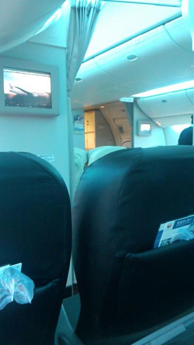 JAL SKY NEXTに搭乗しました