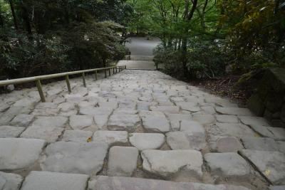 奈良  涼新た長き石段のぼりけり