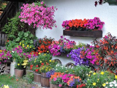 2014年 チロル 皇帝山脈紀行 絶景の5つ星ホテルで過ごす1週間 【8】ヨーロッパで一番美しい花の村、セル