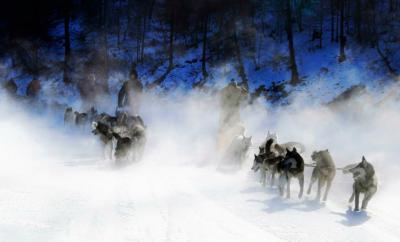 モンゴル初日の出観賞、犬ぞり、スキー体験5日間  2017年12月29日 出発