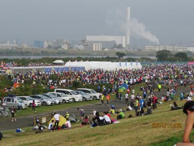 大阪淀川マラソンとバードウォチング