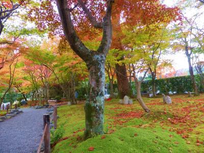 3年ぶりのクラス会と、天気にも恵まれ熟年夫婦の紅葉を求めて千年の古都を辿る旅♪ Last