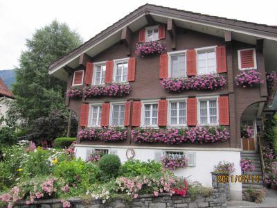 2011年7月スイス-5 雨でもなにげに楽しいハイキング クライネシャイデック → アルピグレン