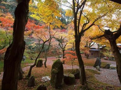 太宰府天満宮と秋の銘酒展 光明禅寺の美しい紅葉を楽しむ旅