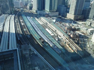 [2015年01月] 夜景とイルミネーション、キラキラいっぱいの東京