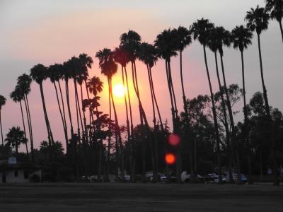ロサンゼルスからモントレーまで北上する(アメリカ西海岸ドライブ旅行 その1)