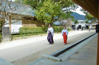 九州なのに…二日目もやっぱり寒かった(>_<) 1 太宰府天満宮と九州国立博物館