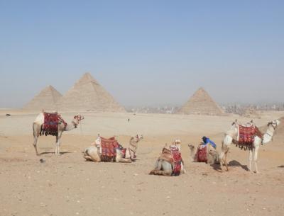 2015 エジプトツアー報告 1.ギザ・カイロ イスラム国の影響は?
