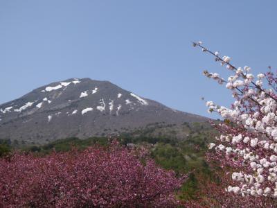 ツアーでGO!!・GW版/残雪と桜の南東北&磐梯熱海温泉2泊3日・その1