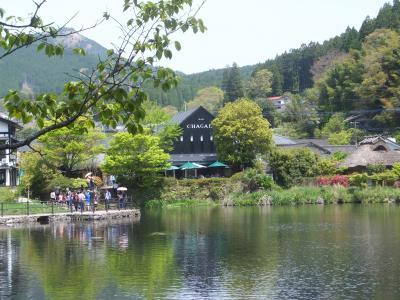 『大阪から二泊三日で別府と由布院へ行って来ました』 [大分 ...