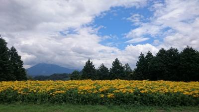 夏休みは鳥取で
