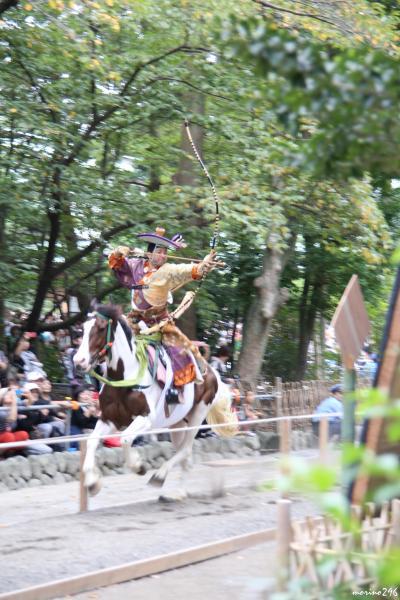 鎌倉:鶴岡八幡宮の流鏑馬と秋の花