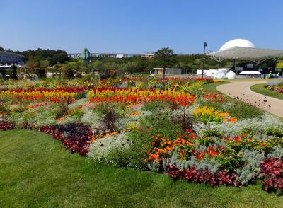 愛知万博10周年、ジブリの大博覧会と花と緑の夢あいちに行ってきました ②