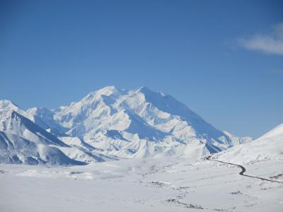 アラスカのデナリ国立公園♪