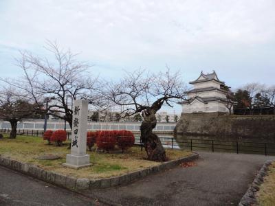 新発田_Shibata 磐越三美人湯のひとつ!月岡温泉と情緒ある城下の街並み