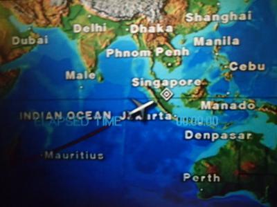 ナミブ砂漠とサファリ、よくばり旅行その10 シンガポールまで