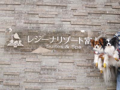 犬と行く秋の山梨 ~清里・忍野八海・富士~ お宿編