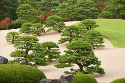 松江に2泊、松江城、出雲大社、足立美術館、石見銀山と定番を楽しんだ