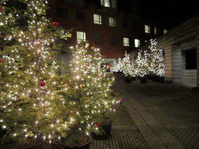 星野リゾート リゾナーレ八ヶ岳クリスマスイルミ