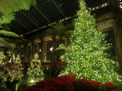 財閥の庭園でクリスマスを過ごす『Longwood Gardens』