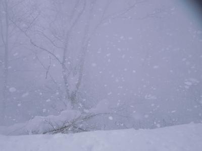2015登り納め ~ご機嫌斜めの谷川岳、ラッセル、ホワイトアウトで撤退~