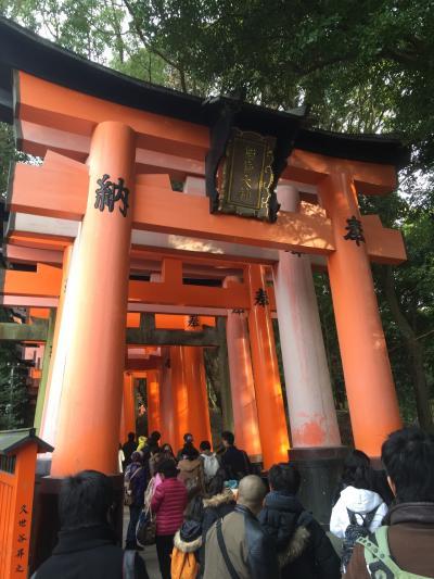 京都の冬は外国の方が沢山です(1)