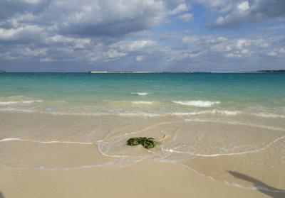 早朝のパイナガマビーチで散歩をして池間島でブルーシールアイス、サトウキビも見られる島尻のマングローブ林/沖縄・宮古島